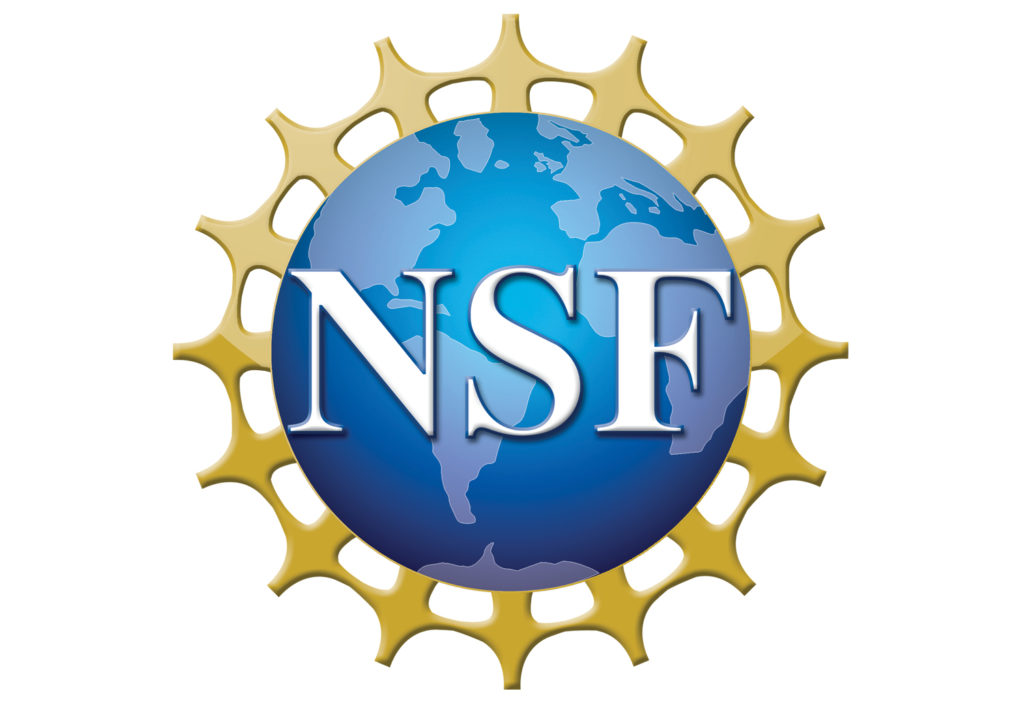 From the LSC Archives: NSF Distinguished Teaching Scholar Interviews